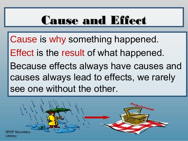 Cause and effect worksheet 3rd grade
