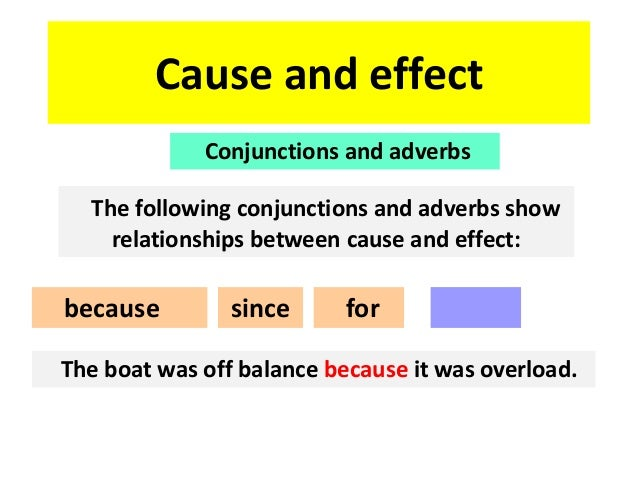 Cause And Effect Essay Fast Food