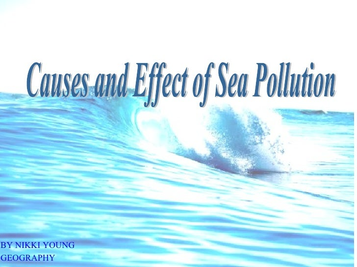 Causes And Effect Of Sea Pollution By  Nikki  Young