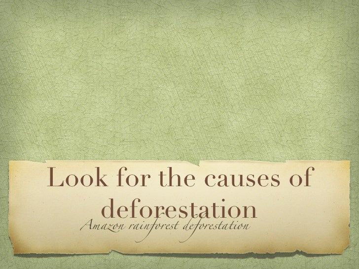 very short essay deforestation Essays - largest database of quality sample essays and research papers on afforestation and deforestation.