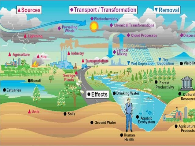 Can Natural Processes Result In Pollution Or Contamination Events