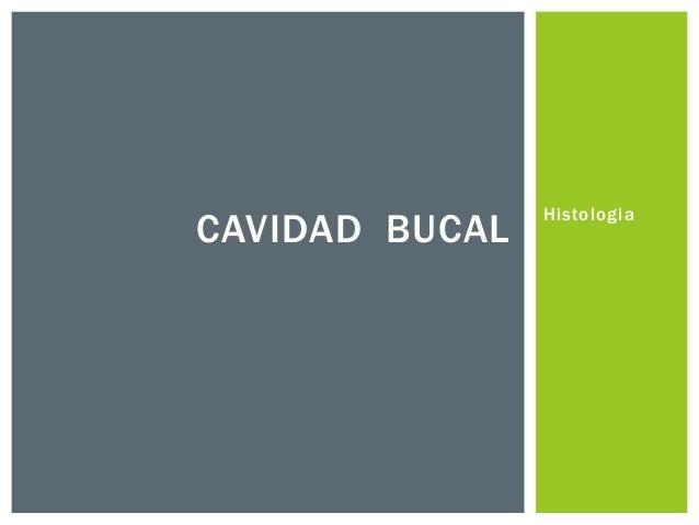 CAVIDAD BUCAL  Histologia