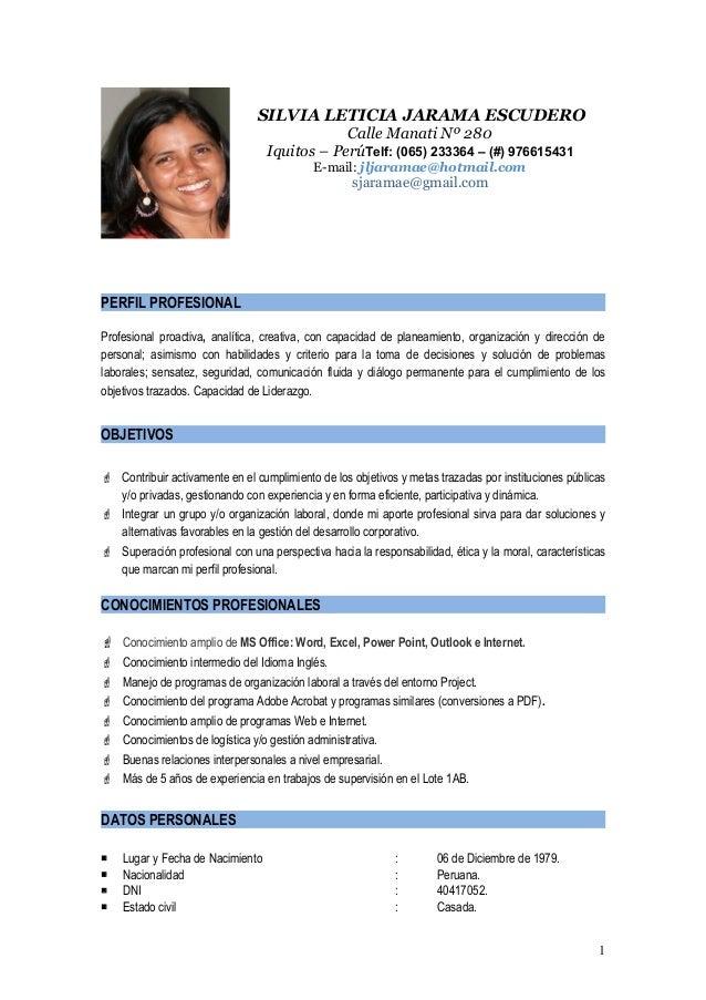 Formato curriculum vitae perfil profesional - Curriculum Ingles ...