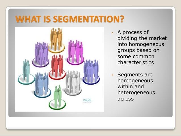 Segmentation study definition