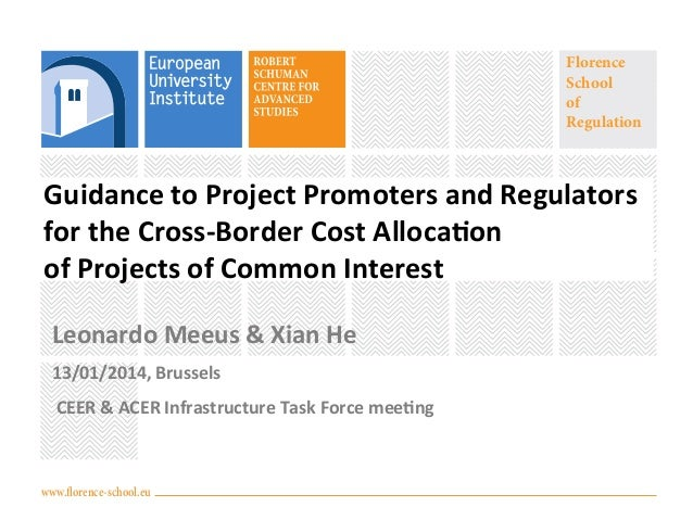 Florence School of Regulation  Guidance  to  Project  Promoters  and  Regulators                ...