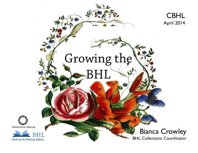 Growing the BHL BHL Collections Coordinator Bianca Crowley April 2014 CBHL