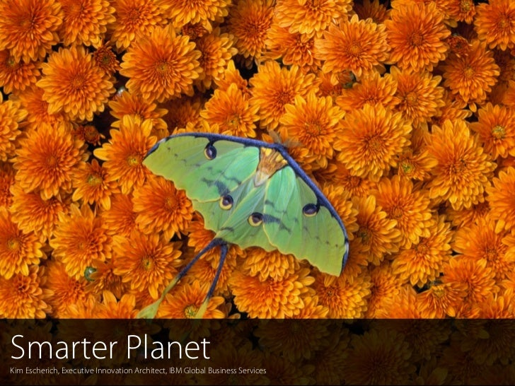 Smarter PlanetKim Escherich, Executive Innovation Architect, IBM Global Business Services  1