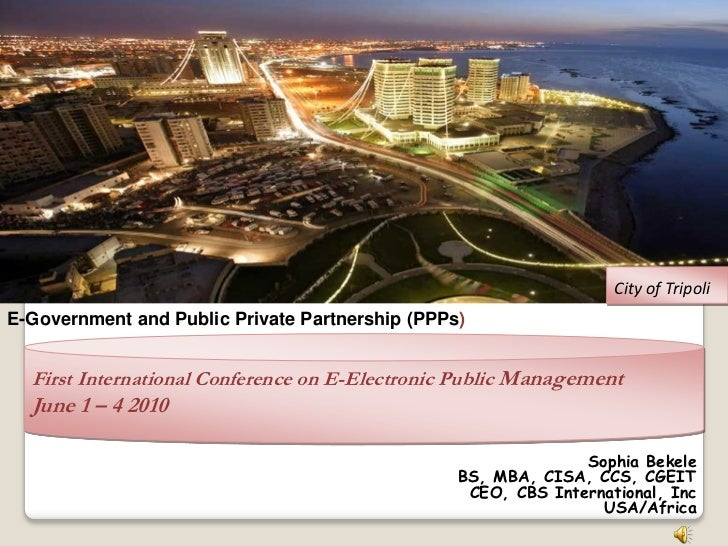 E-Government and Public Private Partnerships