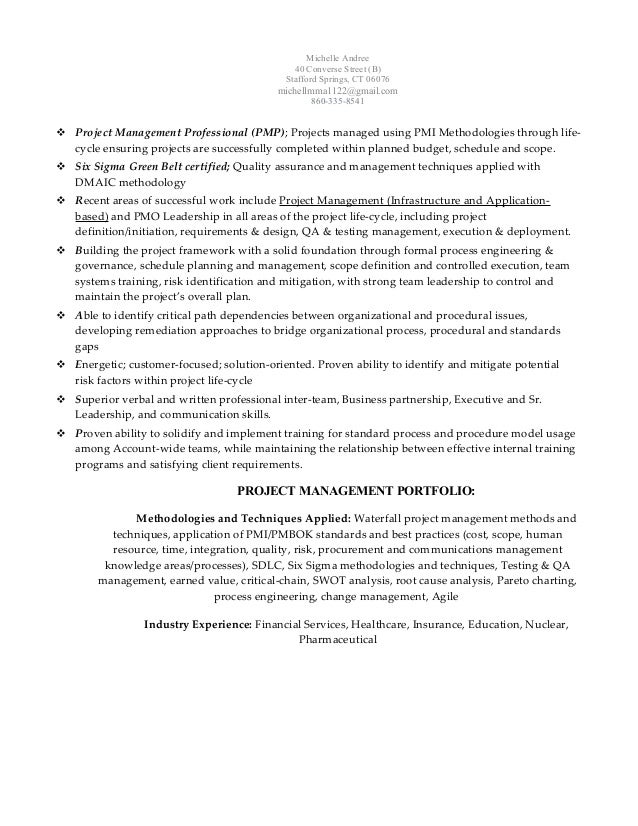 Michelle Andree, PMP, SSGBC - Senior Project Manager Resume 120114