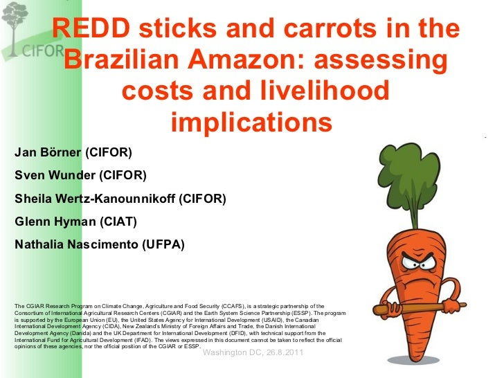 REDD sticks and carrots in the Brazilian Amazon: assessing costs and livelihood implications