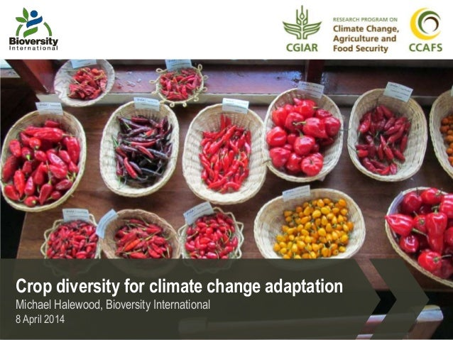 Crop diversity for climate change adaptation Michael Halewood, Bioversity International 8 April 2014