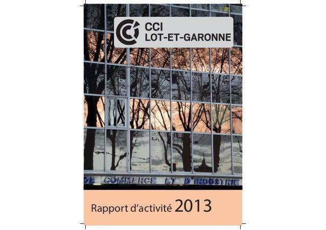 Rapport d'activité 2013