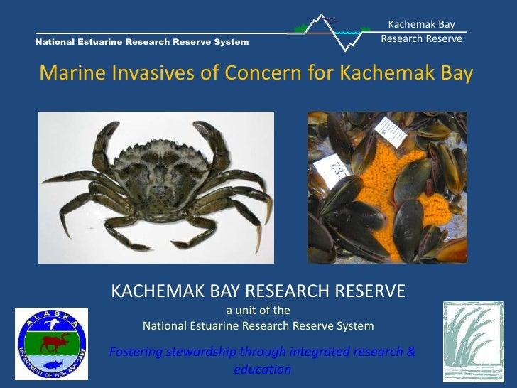 Kachemak Bay<br />Research Reserve<br />National Estuarine Research Reserve System<br />Marine Invasives of Concern for Ka...