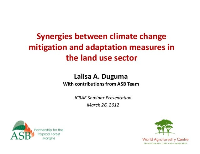 Synergies between climate change mitigation and adaptation measures in the land use sector