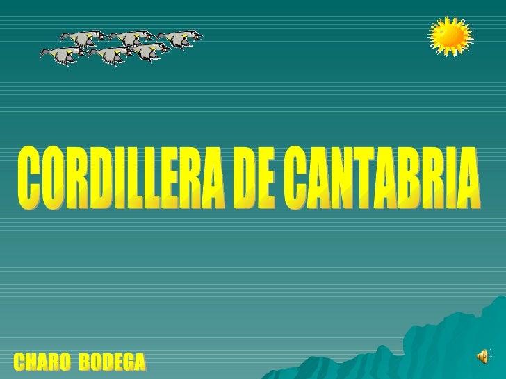 CHARO  BODEGA CORDILLERA DE CANTABRIA