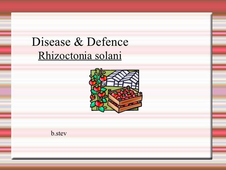 Disease & Defence b.stev Rhizoctonia solani