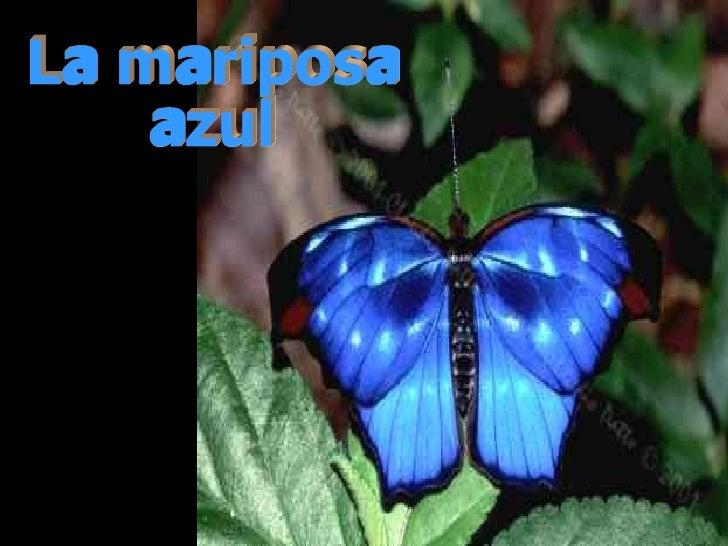 A Gueda's Produtions apresentam... La mariposa azul Formatado por: Miguel JB Filho - Fev/2004