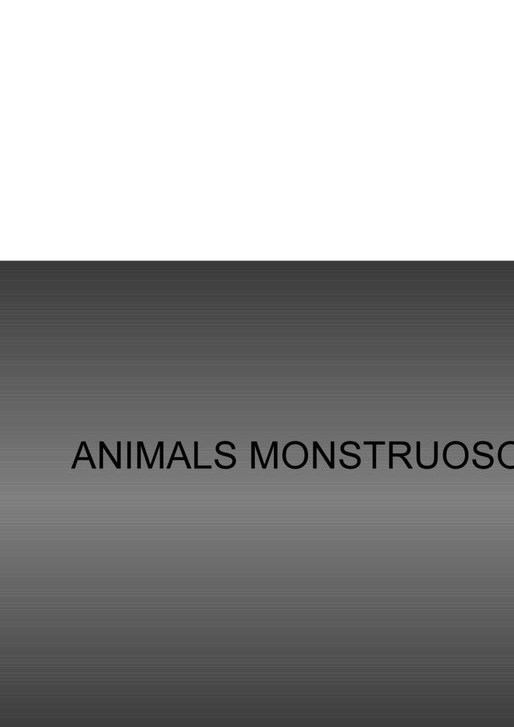 ANIMALS MONSTRUOSOS