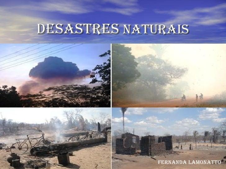 DESASTRES  NATURAIS FERNANDA LAMONATTO