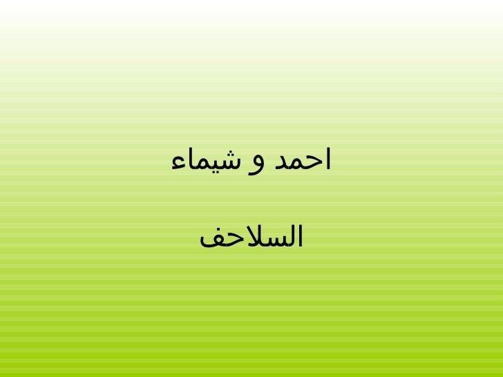 احمد و شيماء السلاحف