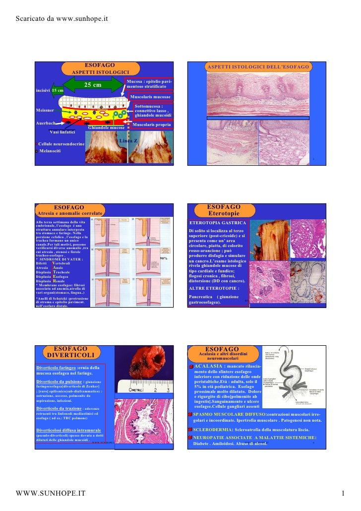 Esofago patologie