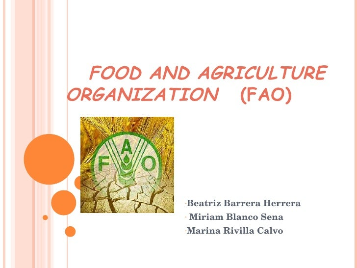 FOOD AND AGRICULTURE ORGANIZATION   (FAO) <ul><li>Beatriz Barrera Herrera </li></ul><ul><li>Miriam Blanco Sena </li></ul><...