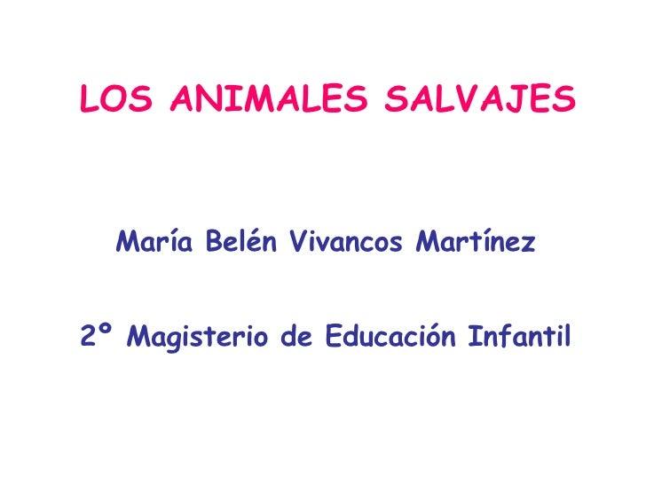 LOS ANIMALES SALVAJES María Belén Vivancos Martínez 2º Magisterio de Educación Infantil