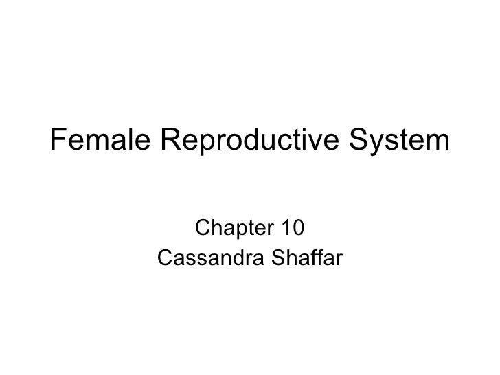 Female Reproductive System           Chapter 10       Cassandra Shaffar