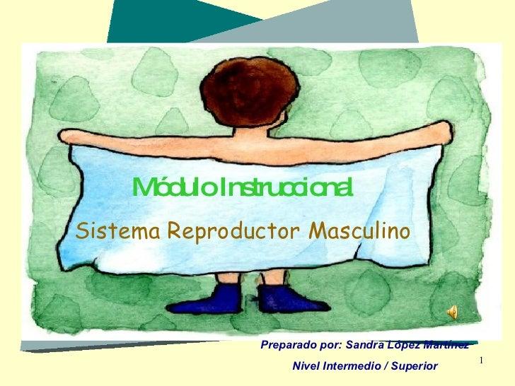 Módulo Instruccional Sistema Reproductor Masculino Preparado por: Sandra López Martínez Nivel Intermedio / Superior