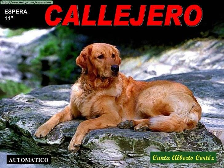 """CALLEJERO Canta Alberto Cortéz ESPERA 11"""" AUTOMATICO"""