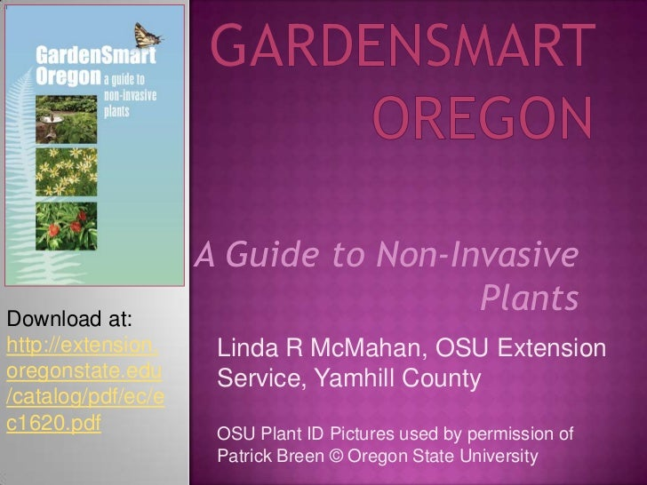 GardenSmart Oregon<br />A Guide to Non-Invasive Plants<br />Download at: <br />http://extension.oregonstate.edu/catalog/pd...