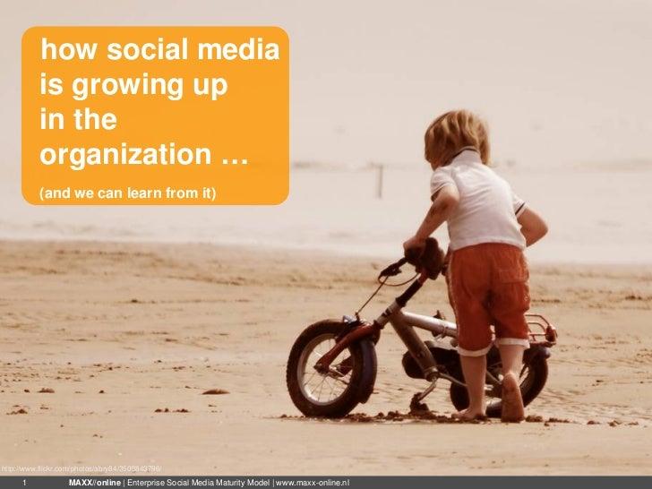 Enterprise Social Media Maturity Model (ESM3)