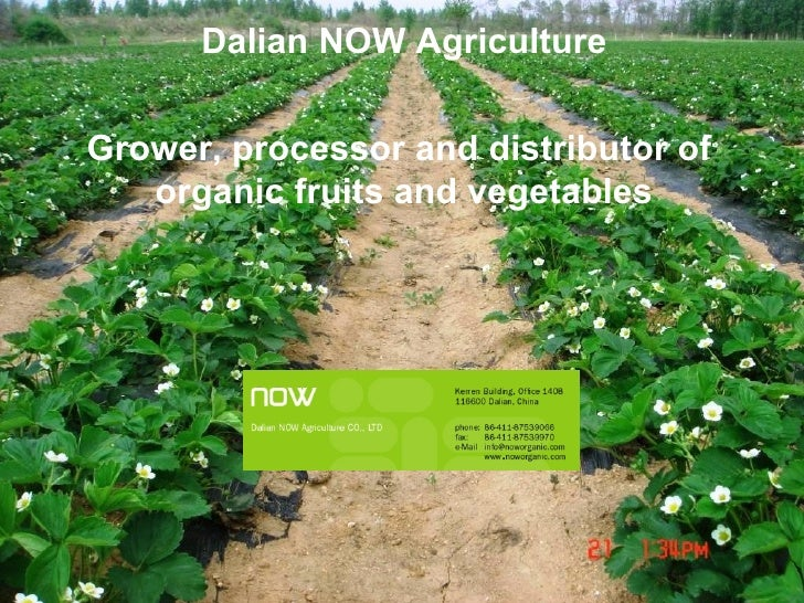 Dalian NOW Agriculture   Grower, processor and distributor of  organic fruits and vegetables