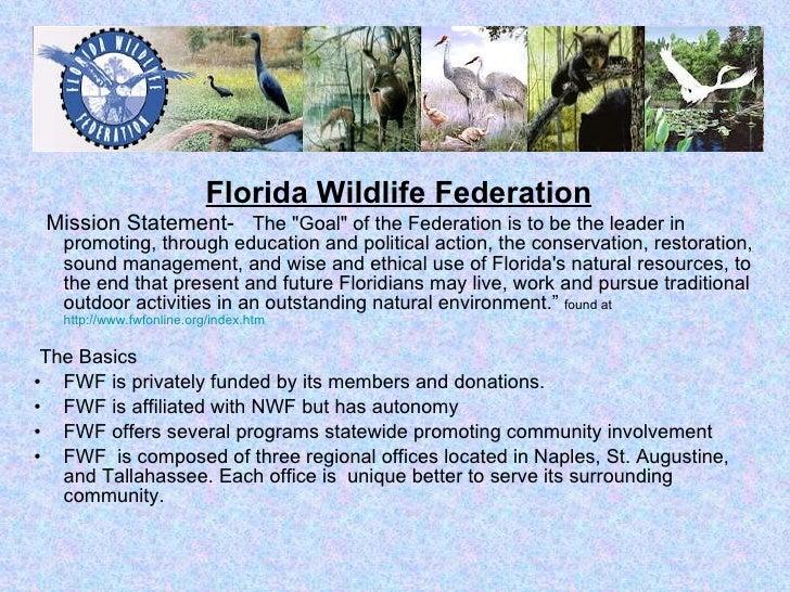 Internship   Fla Wildlife Federation