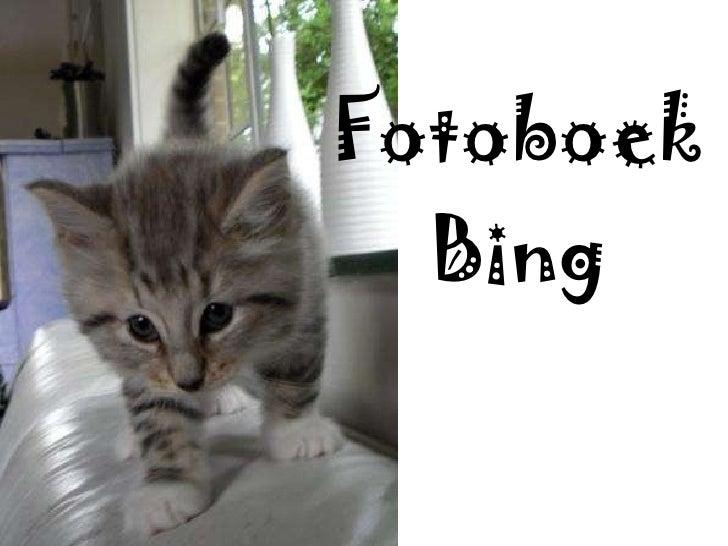 Fotoboek Bing