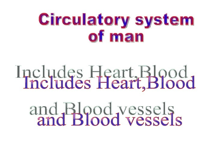 Circulatory system of man Includes Heart,Blood  and Blood vessels