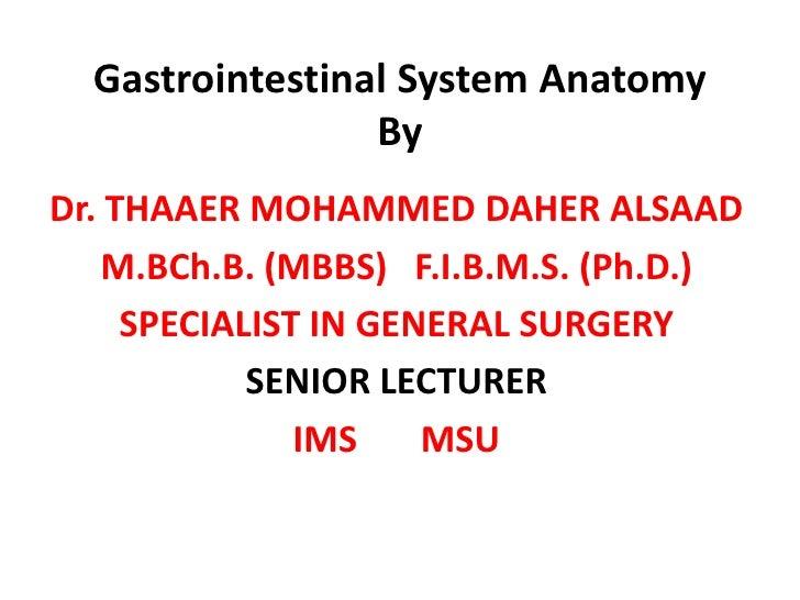 Gastrointestinal System Anatomy                  By Dr. THAAER MOHAMMED DAHER ALSAAD     M.BCh.B. (MBBS) F.I.B.M.S. (Ph.D....