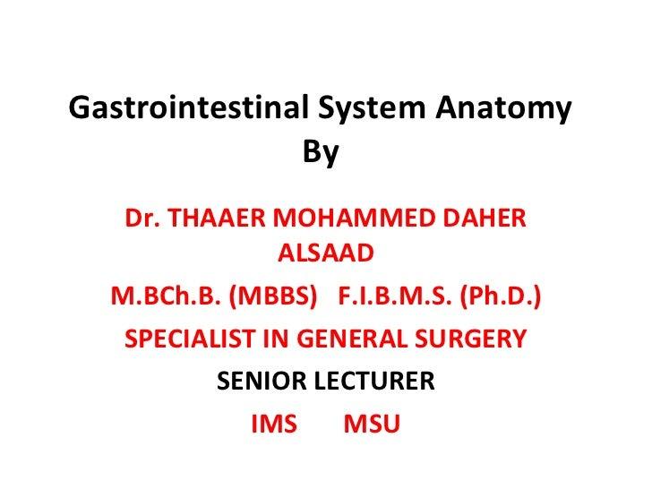 Gastrointestinal System Anatomy By Dr. THAAER MOHAMMED DAHER ALSAAD M.BCh.B. (MBBS)  F.I.B.M.S. (Ph.D.) SPECIALIST IN GENE...
