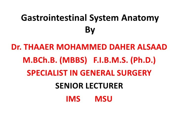 Gastrointestinal System Anatomy                  By Dr. THAAER MOHAMMED DAHER ALSAAD     M.BCh.B. (MBBS) F.I.B.M.S. (Ph.D....