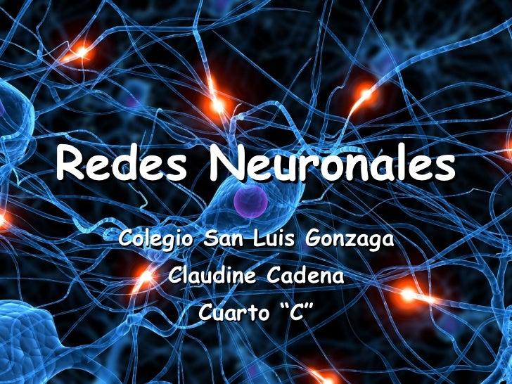 """Redes Neuronales Colegio San Luis Gonzaga Claudine Cadena Cuarto """"C"""""""