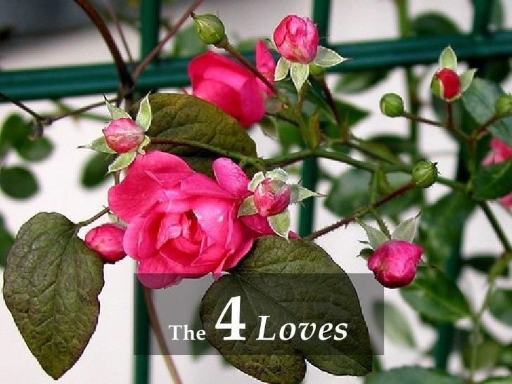 4 Loves