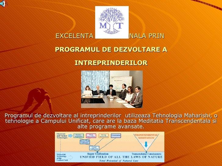 EXCELENTA PROFESIONALA PRIN   PROGRAMUL DE DEZVOLTARE A INTREPRINDERILOR Programul de dezvoltare al intreprinderilor  util...