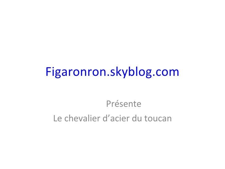 Figaronron.skyblog.com Présente Le chevalier d'acier du toucan