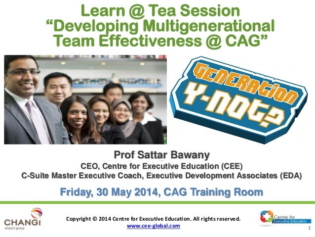 CEE Workshop on Developing Multigenerational Team Effectiveness@CAG - 30 May 2014