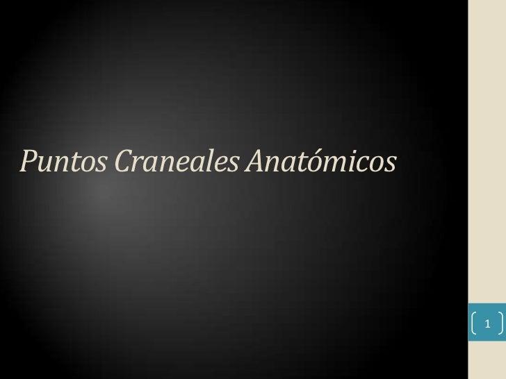 Puntos Craneales Anatómicos                              1