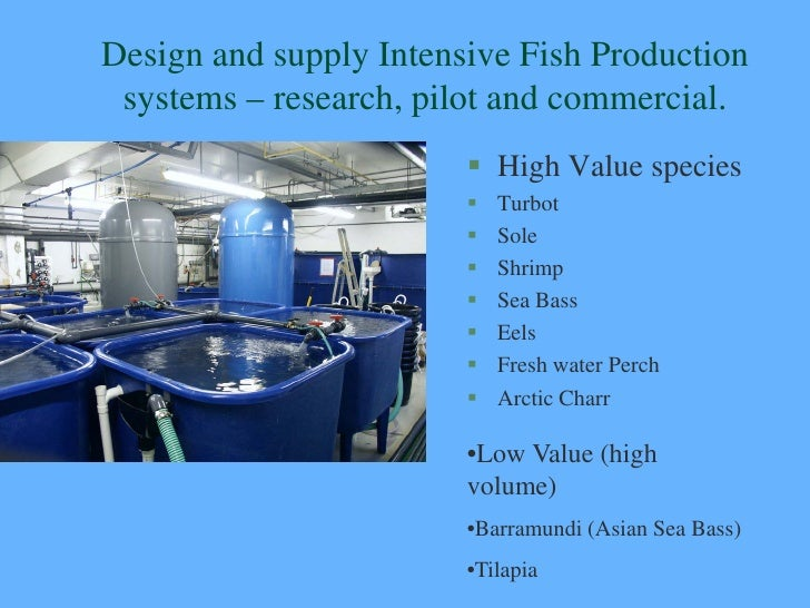 Recirculation Systems For Fish And Shrimp With Integrated