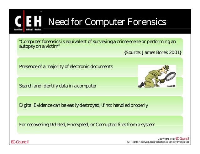 computer forensics essay