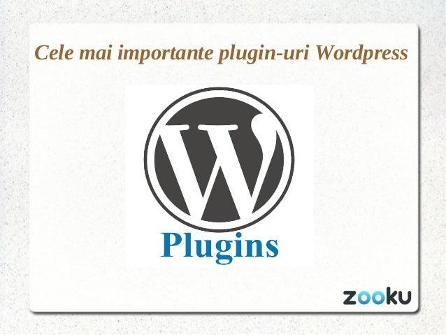 Cele mai importante plugin-uri Wordpress