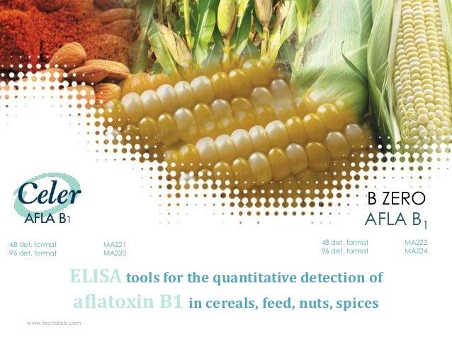 B ZERO AFLA B1 48 det. format 96 det. format  MA221 MA220  48 det. format 96 det. format  ELISA tools for the quantitative...