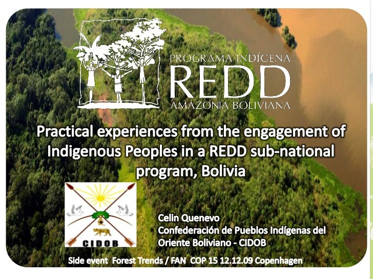 Practical experiences from the engagement of Indigineous Peoples in a REDD sub-national program, Bolivia